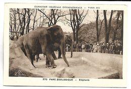 ELEPHANTS - Parc Zoologique - Exposition Coloniale Internationale - Paris 1931 - Elefantes