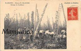 """21 St-JULIEN.- Maison E.BLAVIER  Groupe De Cueilleurs """" Houblon """" Superbe Plan Animé. Carte Rare 1910 - Autres Communes"""