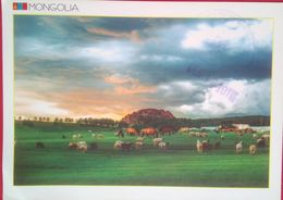 TUV Province, Bornuur Soum, Dugan Khad - Mongolie