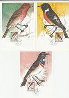 CZECH REPUBLIC 1994 Birds 3 Maxicards - Vögel