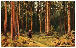 Lapina 485 - J Schekine, Dans La Forêt (4 Lignes) - Pittura & Quadri