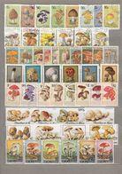 Mushrooms Used (o) Stamps 7 Complete Sets Lot  #24 - Briefmarken