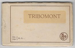 Carnet Tribomont, 13 CPA - Herve