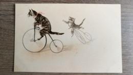 Cpa Illustrateur  Chats Humanisés ..Vélo.. - Künstlerkarten