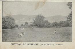 Anhée  Château De Senenne ( Entre Yvoir Et Dinant) - Anhée