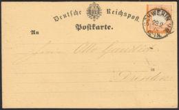 BRUSTSCHILD Nr.18 Karte Sauberer NDP-K1 SCHWERIN I/M. Vom 28.2.74 Geprüft Sommer BPP (rh20) - Brieven En Documenten