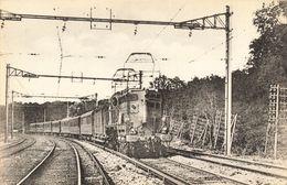 CPA Train - 1007 - Réseau D'Orléans - Le 15 Paris Bordeaux Près De Saint-Michel-sur-Orge - Saint Michel Sur Orge