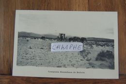 COMPANIA HUANCHACA DE BOLIVIA - ATTELAGE CHEVAUX MULES - Bolivie