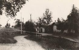 CPSM-32-MONTESTRUC-La Gare - Other Municipalities