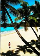 Seychelles Mahe Beach View At Bay Intendance - Seychelles