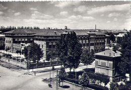 Parma - Museo Seminario - Formato Grande Viaggiata - E 16 - Parma