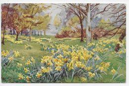 KEW GARDENS IN SPRINGTIME - Artist T. Townshend - Tuck Oilette 3647 - Autres Illustrateurs
