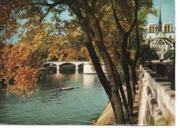PARIS - LA SEINE PRES DE NOTRE DAME - Arrondissement: 04