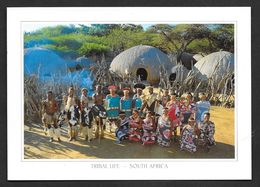SOUTH AFRICA TRIBAL LIFE N°455 - South Africa