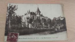 CPA -  St Didier En Velay - Alt 539 M .... Les Marronniers - Saint Didier En Velay