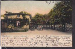 Magdeburg Luftkurort Salzquelle  1906 - Magdeburg