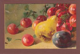 Catharina KLEIN - Signé - Fruit - Cerise - Poire - Pruneau - Klein, Catharina