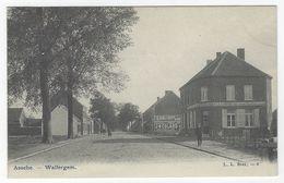Z01 - Assche - Walvergem - Asse