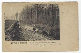 Z01 - Assche - Chemin Creux à La Morette - Asse