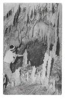 ASIE : Dans Une Grotte - Zonder Classificatie