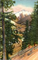 Colorado Bear Mountain And Chattanooga Valey From The Million Dollar Highway 1941 Curteich - Etats-Unis