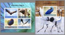 SAO TOME 2019 MNH Rare Birds Seltene Vögel Oiseaux Rares M/S+S/S - OFFICIAL ISSUE - DH2008 - Altri
