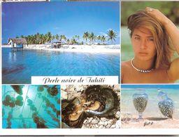 Une Petite Ferme Perlière Aux Tuamotu - Tahiti
