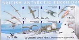 BAT, Bloc (6 TP à 50p Southern Giant Petrel), Neufs ** - Britisches Antarktis-Territorium  (BAT)