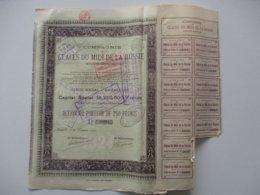 Compagnie Des Glaces Du Midi De La Russie - Bruxelles - Version Capital 18 250 000 - 1924 - Russia