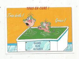 Cp , Humour , TOUS EN CURE ! Bains Aux Algues , Trés Drôle ,grouic , Cochon , Vierge - Humour