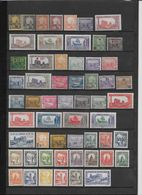 Tunisie - Collection Timbres Neufs */** - TB - Unclassified