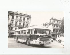 TOULOUSE STCRT  5 AUTOBUS CHAUSSON TYPE APH 521 .LE 21 5 1971 LE CHAUSSON N° 146 PASSE DEVANT LE MT AUX MORTSTS - Toulouse