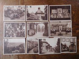 10 Cartes Postales Musée Forestier Provincial, Namur (Citadelle) Vers 1930 - Namur