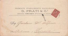 ** G. PRATI & C.-  OSIMO.- (AN).- STAB. BACOLOGICO.-** - Italia