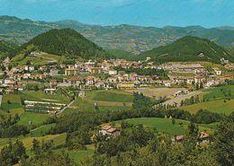 6547/A/FG/20 - CASTELNUOVO NE' MONTI (REGGIO EMILIA) - Panorama - Reggio Nell'Emilia