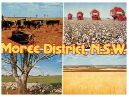 (A 36) Australia - NSW - Moree District - Altri