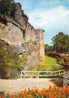 67 - Lichtenberg - La Forteresse - Les Remparts - France
