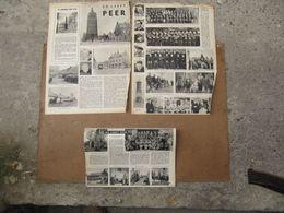 Peer - 3 Pagina's - 1953 - Waregem