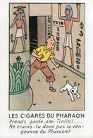 CPM / Les Aventure De Tintin / Dessin De Herge / Les Cigares Du Pharaon - Comics