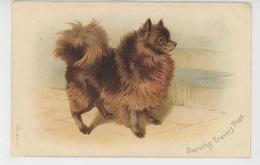 CHIENS - DOGS - Jolie Carte Fantaisie Chien Spitz - Dorothy Travers Pope - Perros