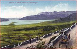 Teodo (Tivat) * Strasse, Pferd, Kutsche, Bucht Von Kotor * Montenegro * AK2943 - Montenegro