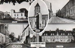 V665Chab  85 Saint Hilaire Des Loges Multivues - Saint Hilaire Des Loges