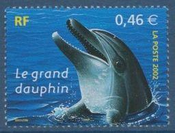 2002 - 3486 - Grand Dauphin - France