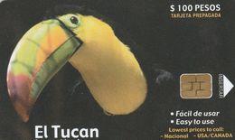 Mexico - BBG - El Tucan - Mexico