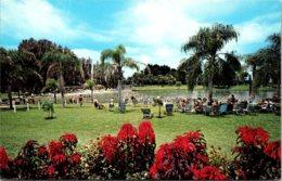 Florida Venice Warm Mineral Springs - Venice