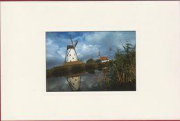 Damme Kanaal En Windmolen Molen Grote Kaart Moulin A Vent Windmill - Damme