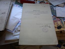 A Temes Begavolgyi Vizszabalyozasi Tarsulat Helyzetrajz Az O Birda Patak Detta Esa Berzava Csatorna Toltesepites 1905 - Cartes
