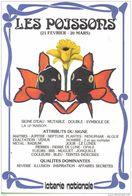 Carte Postale De La Loterie Nationale Horoscope  Poissons  Trés Beau Plan - Astrology