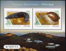 Costa Rica National Parks Chirripó, Slug, Snail, Crestones, MNH 2019 - Costa Rica