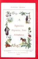 CHROMO - ALPHABET MIGNON - Cie COLONIALE - A - Otros
